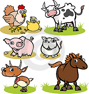 Bovine is a term relating to cattle
